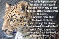 View the image: Leopard Jer. 13:23, Heb. 9:14